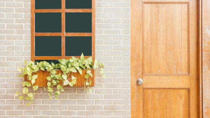 Cobalah menggunakan tanaman rambat untuk keasrian rumah. (Foto:Pexels)