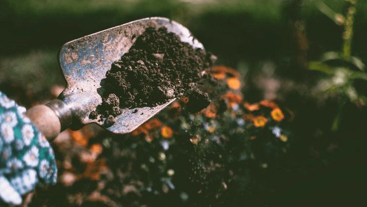 Tanah perlu disiapkan sebelum penanaman rumput. (Sumber. Pexels)