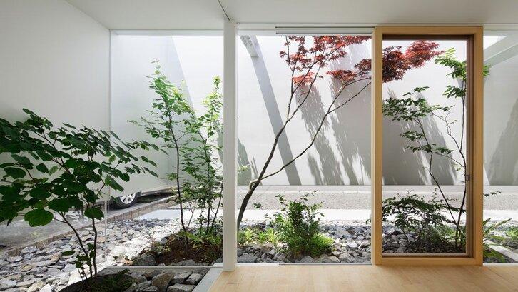Jangan takut meletakkan tanaman berukuran sedang atau besar ke dalam rumah. (Foto: Gardenista.com)