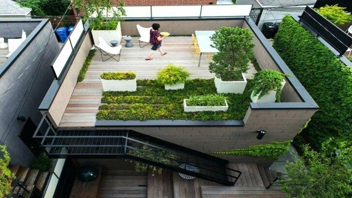 Roof garden. (Foto: ruparupa.com)