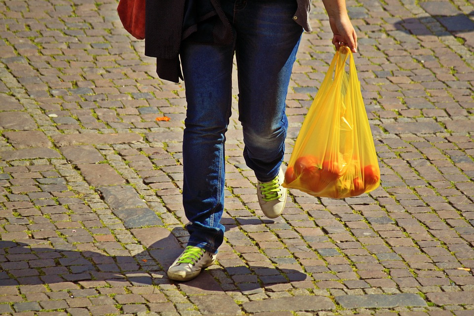 Kerajinan dari plastik kresek yang bisa ditiru misalnya bunga atau tanaman artificial, pouch serbaguna, maupun vas yang ekonomis. Sumber: Pixabay