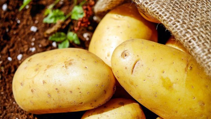 Kentang adalah sayuran penghasil gizi terbaik dan bisa menggantikan peran nasi. (Foto: Pixabay - Couleur)