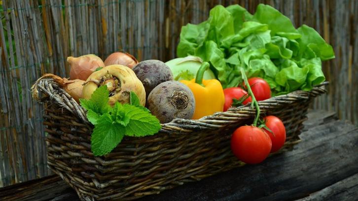 15 Ide Usaha Pertanian Rumahan 2021