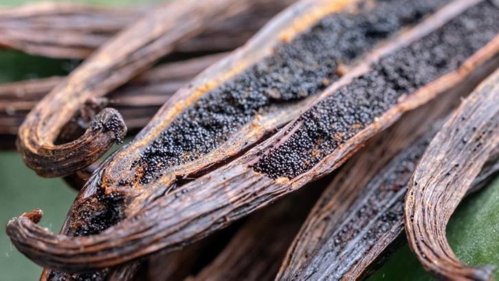 Vanila merupakan salah satu tanaman yang hasilnya bisa dijual dengan harga tinggi. (Foto: Mashed)