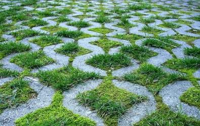 1. GRASS BLOCK