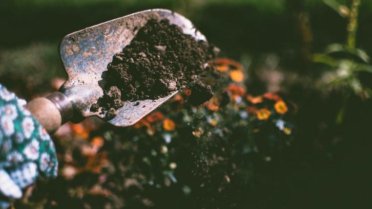Tanah harus dimanfaatkan sesuai dengan jenisnya yang berbeda-beda. (Foto: Pexels - Lisa Fotios)