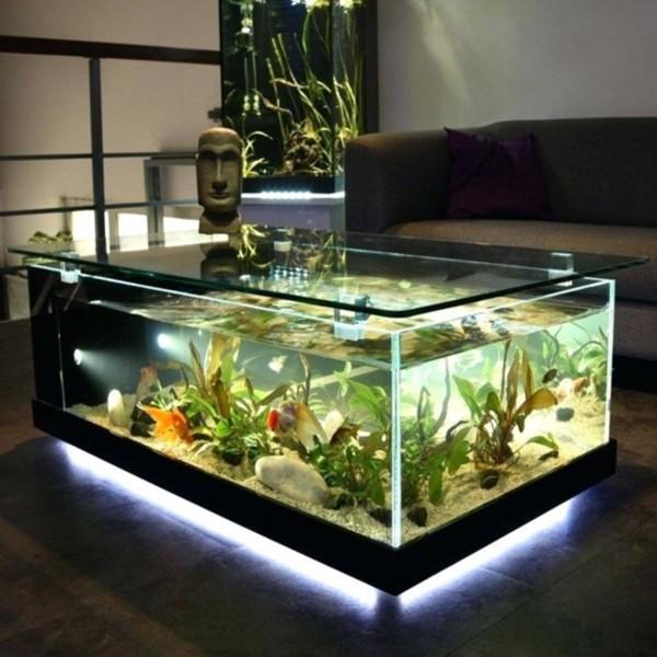 10 Idea Aquarium Kolam Mini Boleh Buat Di Malaysia