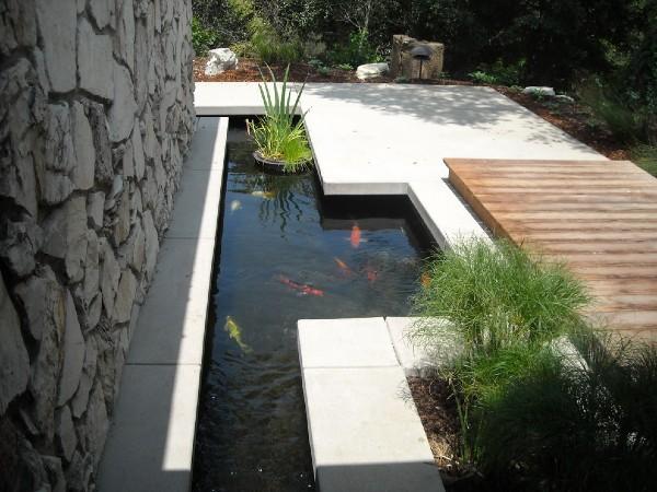 akuarium, akuarium ikan, kolam ikan, kolam ikan mini,  aquascape ,memelihara ikan, ikan hiasan