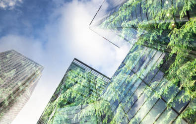 natural solutions, green design, Nature-based solutions, green architecture, Solutions for climate change