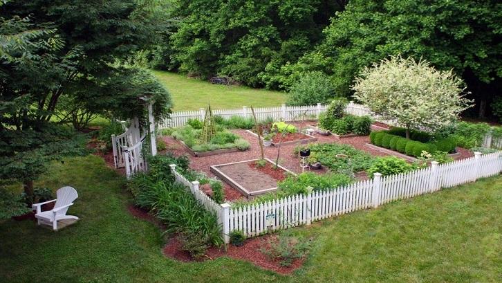 Secara garis besar, langkah-langkah berkebun di rumah dimulai dari menentukan jenis kebun yang akan dibuat. Sumber: Pinterest