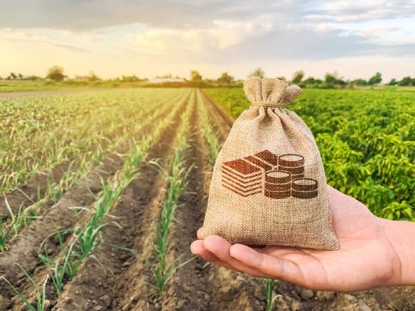 syarat tanah, tukar syarat tanah, syarat kegunaan tanah, status tanah, rizab melayu, tanah pertanian, pejabat tanah