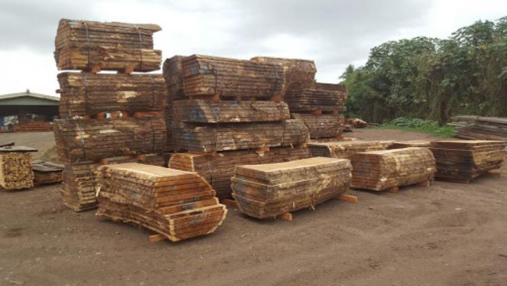 Kekuatan trembesi bisa menyaingi kayu jati. (Foto: Wood Drying Equipment)