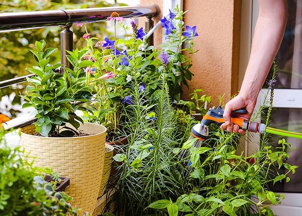 10种公寓阳台盆栽设计,教你打造精美空中花园, 公寓, 盆栽,室内植物, 盆栽植物, 阳台, 小盆栽