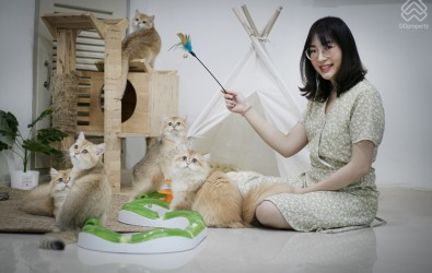 Home_Story_Cat_Lover1