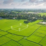 Ulasan Tanah Girik dan Cara Mengurusnya di Kantor BPN Setempat-rev