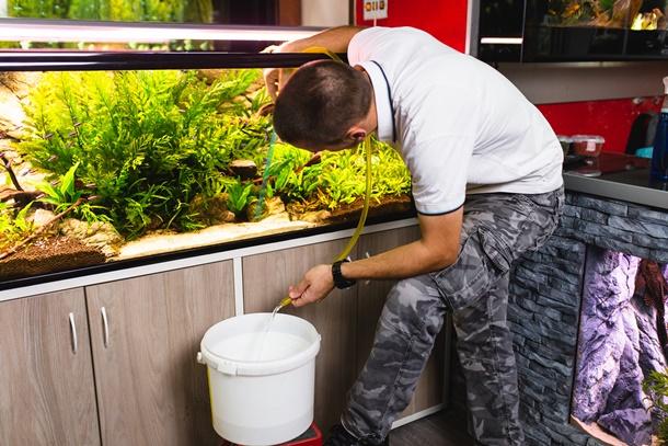 การทำความสะอาดตู้เลี้ยงปลาทองเป็นสิ่งสำคัญ